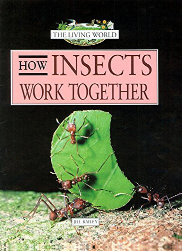 9780749651480: How Insects Work Together (Living World)