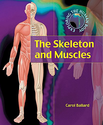 9780749659660: The Skeleton and Muscles (Exploring the Human Body)