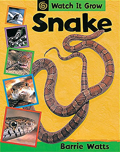 9780749661229: Snake (Watch it Grow)