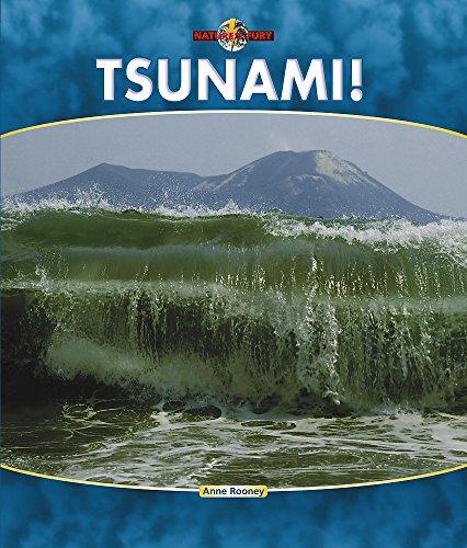 9780749666132: Tsunami!