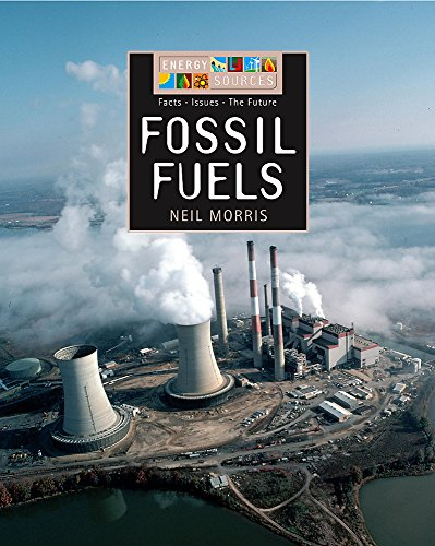 9780749667351: Fossil Fuels (Energy Sources)