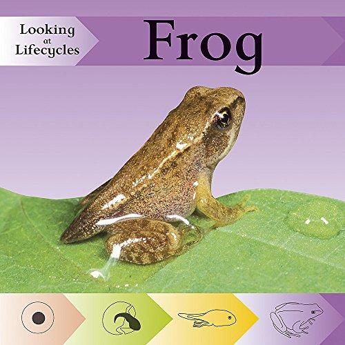 9780749671068: Frog (Looking at Lifecycles)