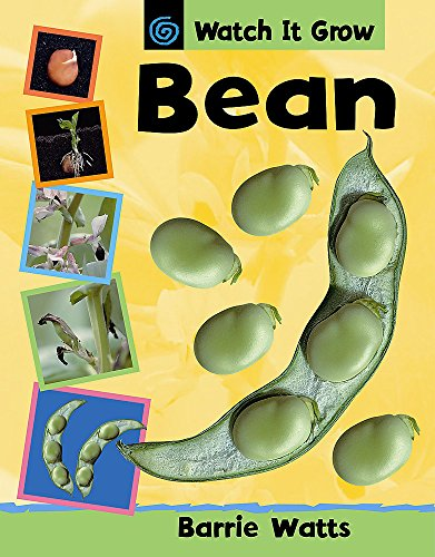9780749673604: Bean (Watch it Grow)