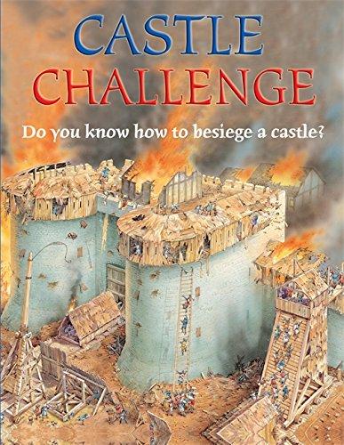 9780749677114: Castle (Challenge)