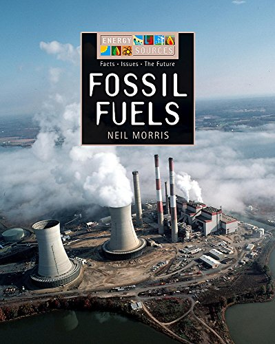 9780749677640: Fossil Fuels (Energy Sources)