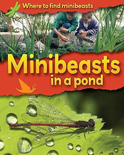 9780749680091: Minibeasts in a Pond (Where to Find Minibeasts)