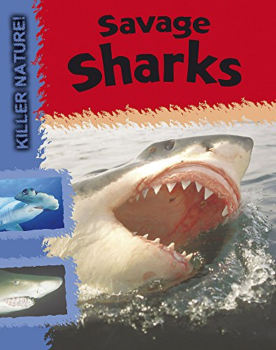 9780749683139: Savage Sharks (Killer Nature)