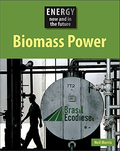 9780749687700: Biomass Power (Energy Now & in the Future)