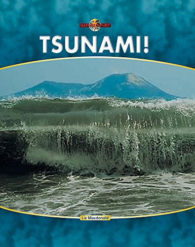 9780749689360: Tsunami