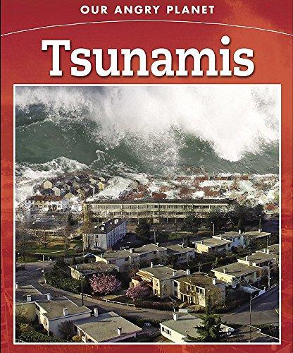 9780749690502: Tsunami