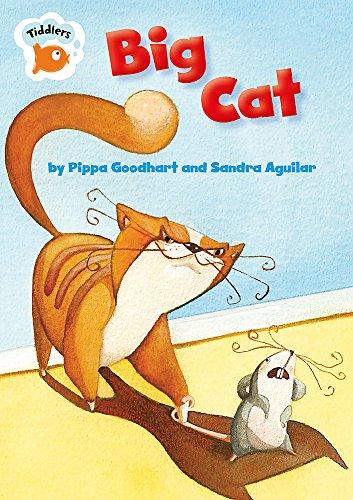 9780749694005: Tiddlers: Big Cat