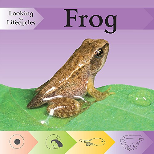 9780749696344: Frog (Looking at Lifecycles)