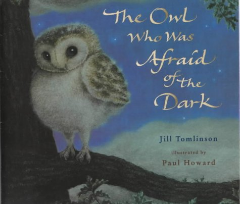 9780749741785: The Owl Who Was Afraid of the Dark (Picture Mammoth)