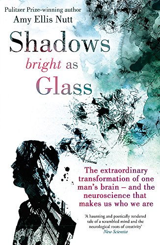 9780749956233: Shadows Bright as Glass: The Extraordinary Transformation of One Man's Brain - And the Neuroscience That Makes Us Who We Are