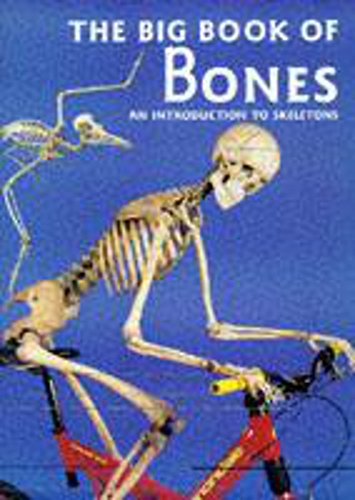 9780750024020: The Big Book of Bones: Introduction to Skeletons