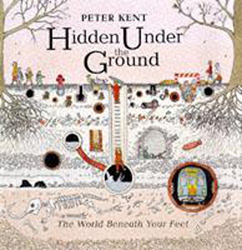 9780750024457: Hidden Under the Ground (The world beneath your feet)