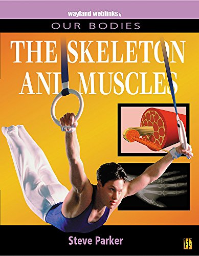 9780750237208: Our Bodies: Muscles and Skeleton