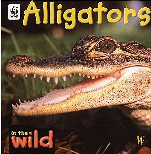 9780750241335: Alligators (In the Wild)