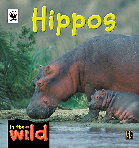 9780750242295: Hippos (In the Wild)