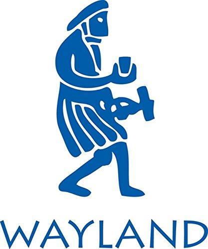 9780750242325: Orangutans (In the Wild)