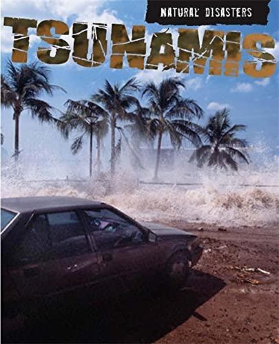 9780750250467: Tsunamis (Natural Disasters)
