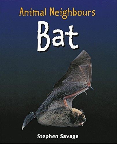9780750250795: Bat (Animal Neighbours)