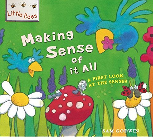 9780750258821: Making Sense of it All