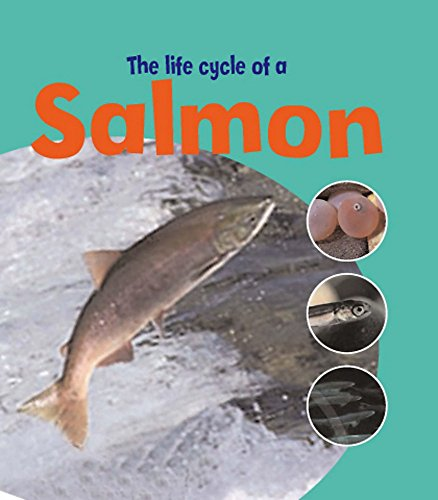 9780750271882: The Life of a Salmon (Learning about Life Cycles)