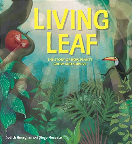 Living Leaf: The Story of How Plants: Heneghan, Judith