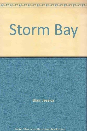 9780750508681: Storm Bay