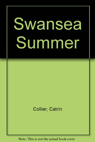 9780750519274: Swansea Summer