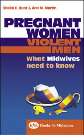 Pregnant Women, Violent Men: What Midwives Need: Hunt PhD MSc(Econ)