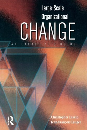 9780750672306: Large-Scale Organizational Change: An Executive's Guide