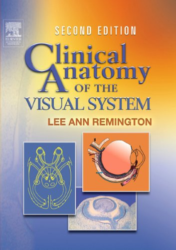9780750674904: Clinical Anatomy of the Visual System, 2e