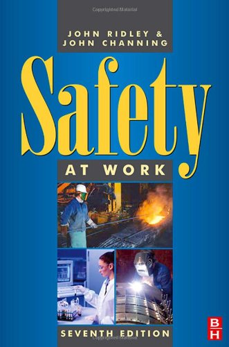 9780750680356: Safety at Work