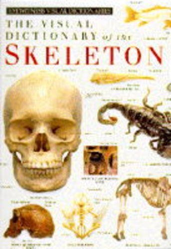 9780751310603: The Visual Dictionary Of The Skeleton (Eyewitness Visual Dictionaries)