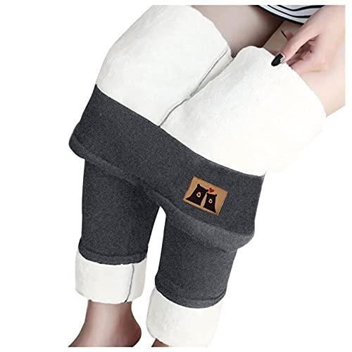 9780751315707: BMA Family Health Encyclopedia: Windows 95/98 (BMA Family Doctor)