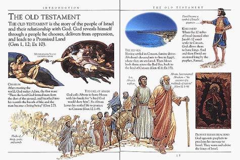9780751354973: Bible Companion (Pockets)