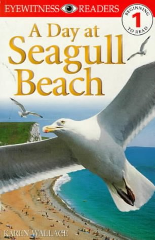 9780751358988: Day at Seagull Beach (DK Readers Level 1)