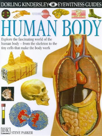 9780751361421: Human Body (Eyewitness Guides)