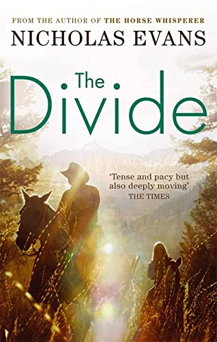 9780751539349: The Divide