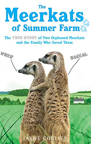 9780751545845: The Meerkats Of Summer Farm: The True Story of Two Orphaned Meerkats and the Family Who Saved Them