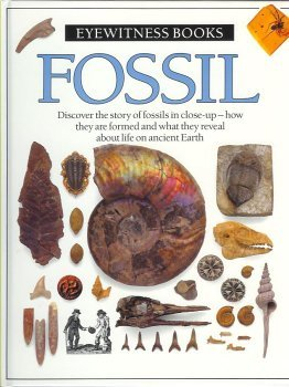 9780751651089: Fossil