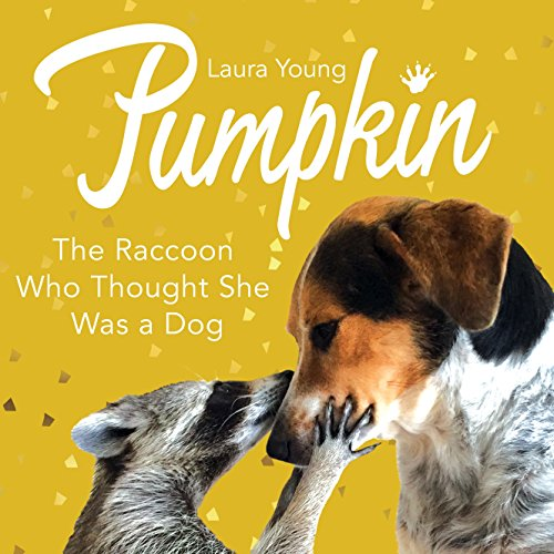 9780752266114: Pumpkin: The Raccoon Who Thought She Was a Dog