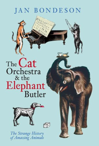 The Cat Orchestra & the Elephant Butler