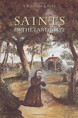 9780752441085: Saints in the Landscape: Heaven and Earth in Religious Dedications
