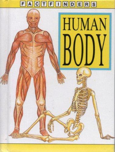 9780752516837: Human Body (Factfinders)