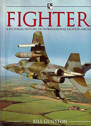 9780752520865: Fighter