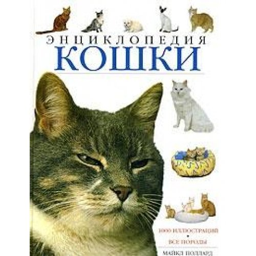 9780752541570: The Encyclopedia of the Cat