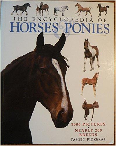 9780752565682: The Encyclopedia of Horses & Ponies